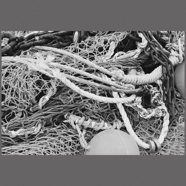 Nets by BertM