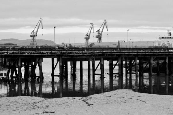 Cranes by BertM
