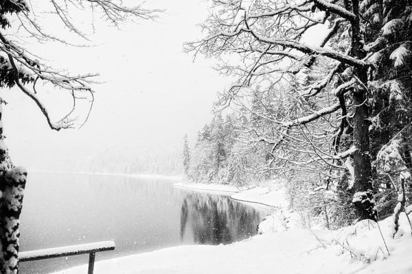 Shores  of Winter by mlseawell