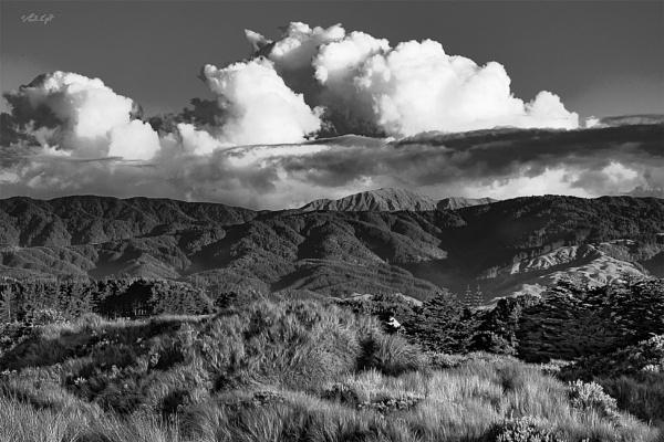 Inland view from Waikawa Beach (6466) by paulknight