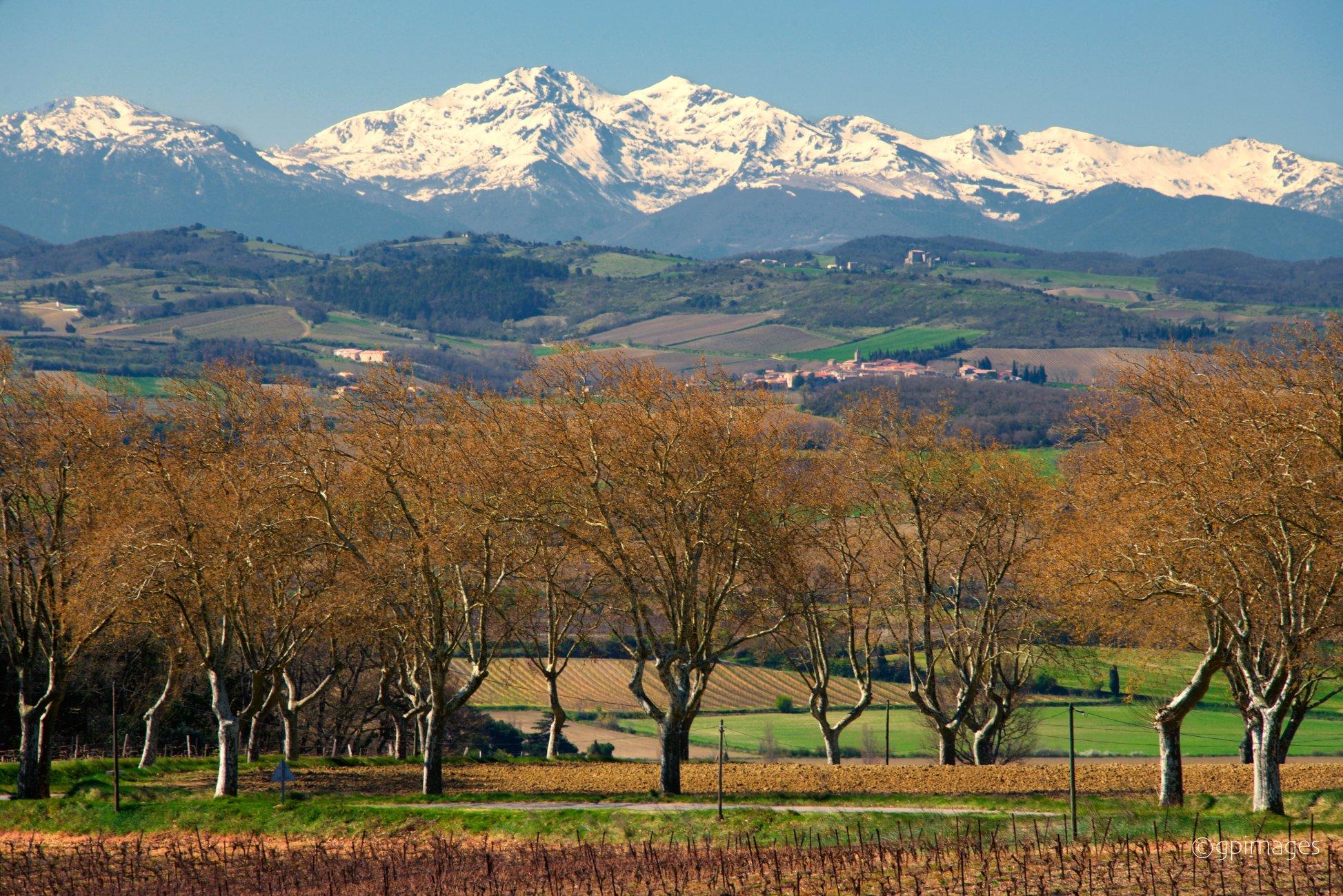 Pyrenean Springtime