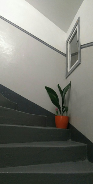 staircase with orange pot