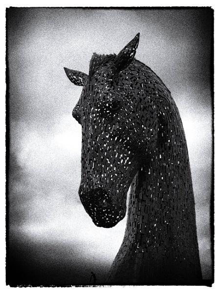 Dark Horse by Philip_H