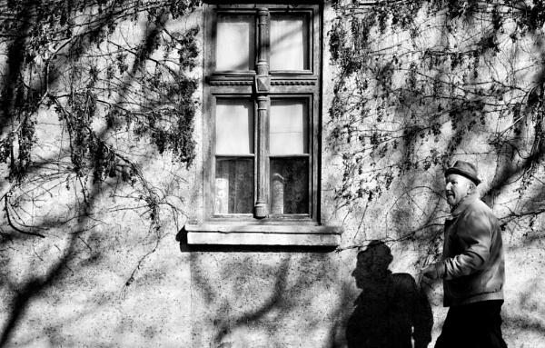Shadows of Morning XLVIII by MileJanjic