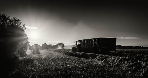 FARMERS TOYS by mogobiker