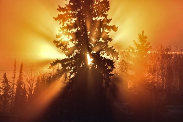 Frosty Ontario Sunrise by grizztazz1