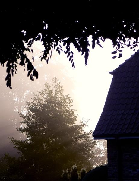 Misty Morning by FotoDen