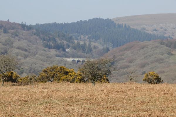 Burrator on Dartmoor by Ball82