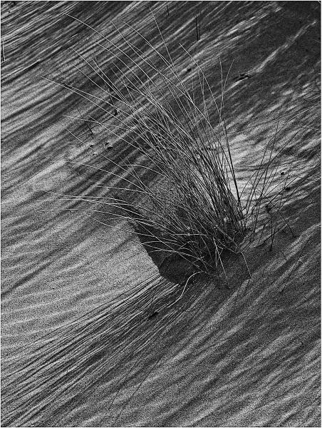 Beach Shadows by MalcolmM