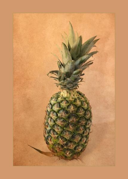 Pineapple by Joline