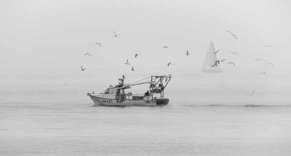 Fishing on a misty morning. by mjparmy
