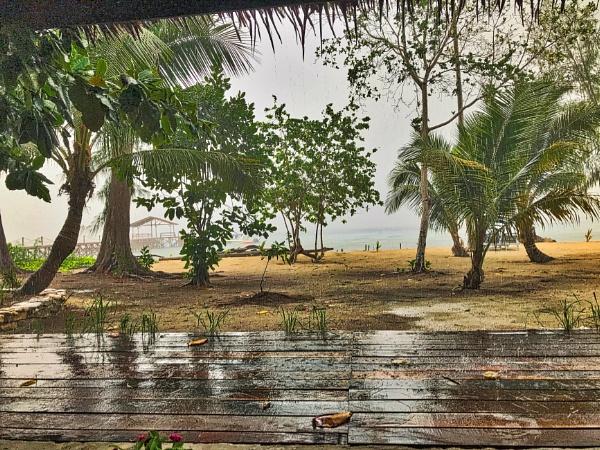 Rain. by WesternRed