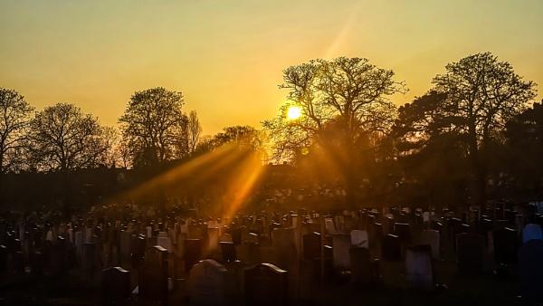 Sun shines on the dead