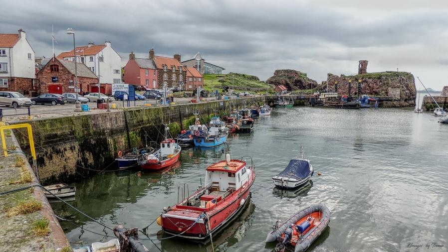 Harbour No.1 At Dunbar.