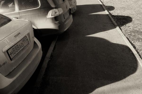 april shadows by leo_nid