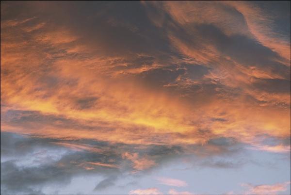 goodmorning sun by macdaniel