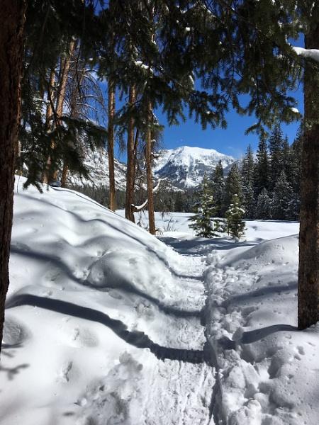 Adams Falls Trail  by attybrown
