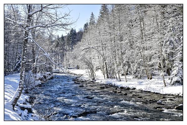 white wonderland by ossca
