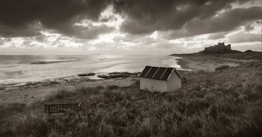 Northumberland by the Sea