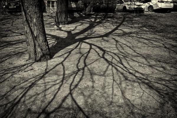 april shadows #2 by leo_nid