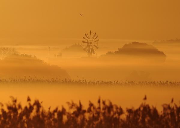 Mallorca Sunrise by NeilSchofield
