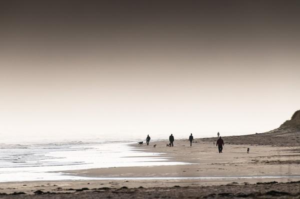 Doggone Beach