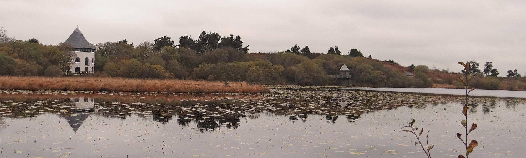 LLYN LLECH OWAIN Local Lake