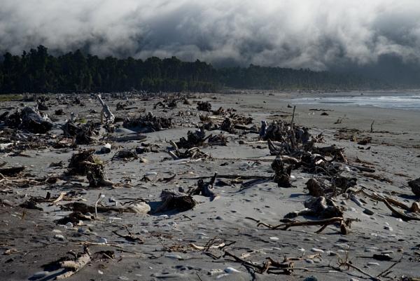 wasteland... by alfpics