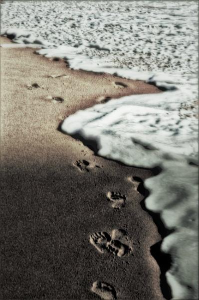 Follow by Renmurr