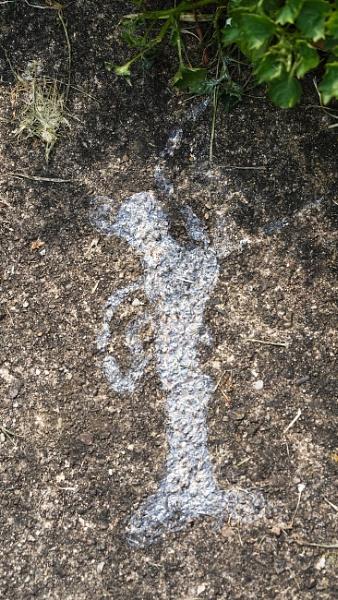 A Slugs view of man by johnwnjr