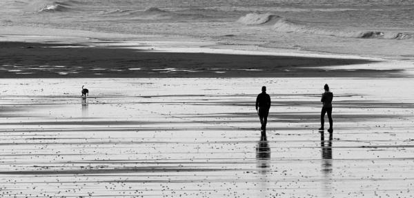 Skinningrove dog walking by oldgreyheron