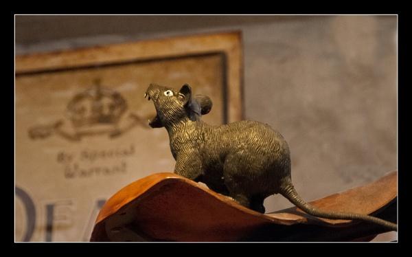 \' it\'s not rat, it\'s nice cuddly hamster.\' by bluesandtwos