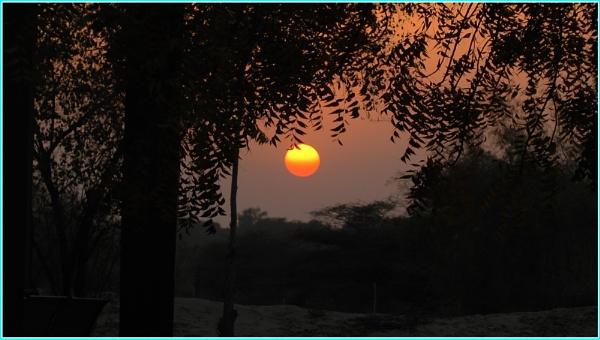Sunset at Oasis park by RajaSidambaram