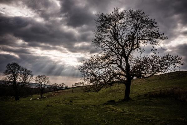 Stormy Sky by mbradley