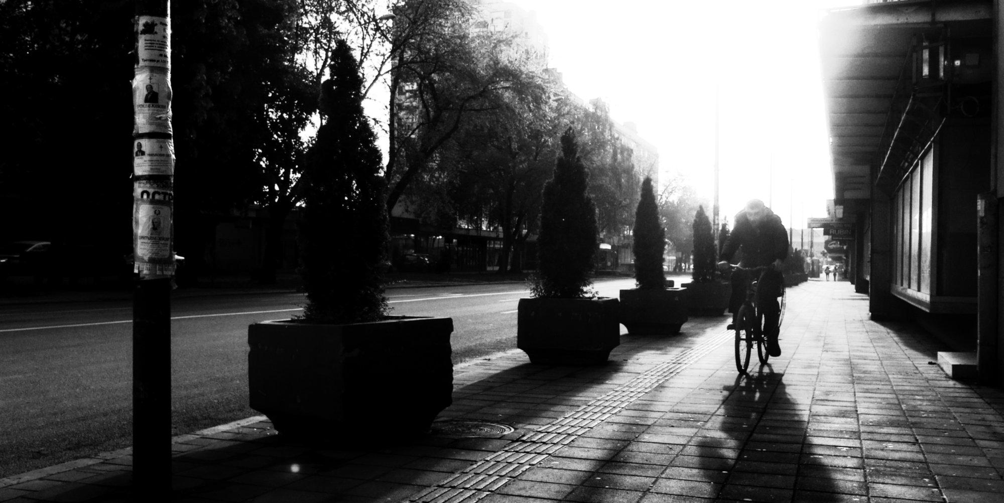 Shadows of Morning LXIV