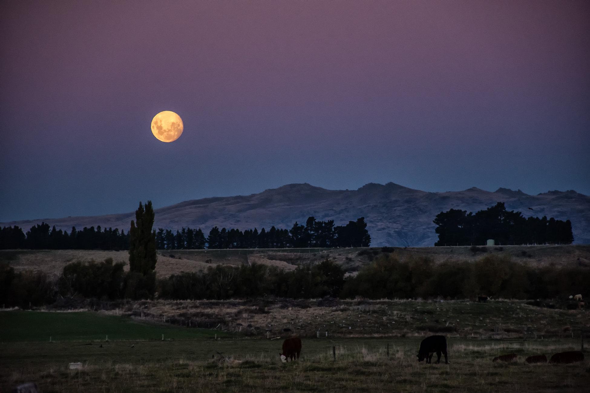 Easter Moonrise - Central Otago NZ