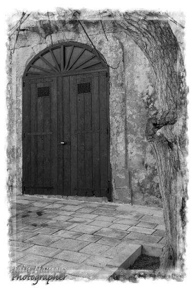 Doorway and tree by IainHamer