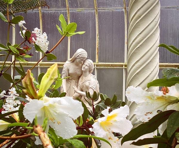 A Walk in the garden II by AliEscobar