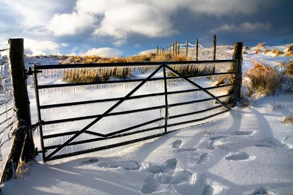 Frozen Gate by pitotstatic