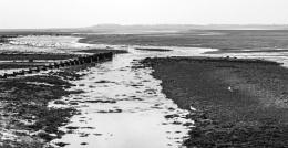 Strangford Lough in mono