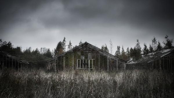 Greenhouse by MiraMaenpaa