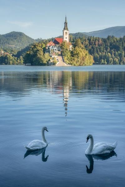 Lake Bled  (I)