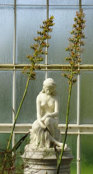 Between the flowers by AliEscobar