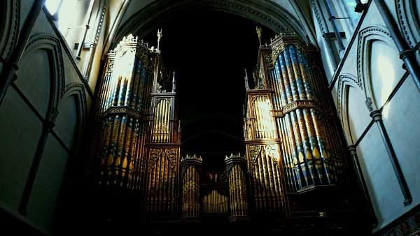 Organ Pipes Bathed in Light by jujupops