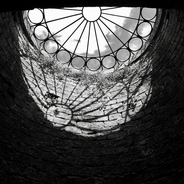 Skylight by nclark