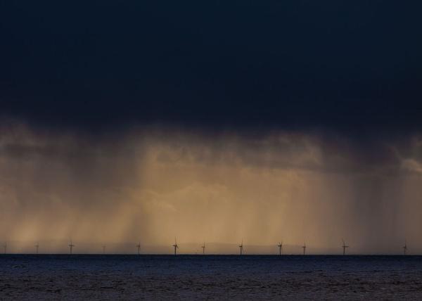RAIN by felixdcat