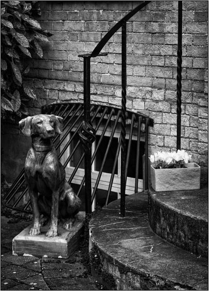 On Guard by AlfieK