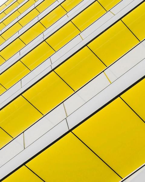 Yellow & White