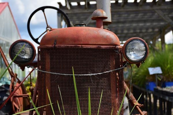 rusty tractor by lebkuchen