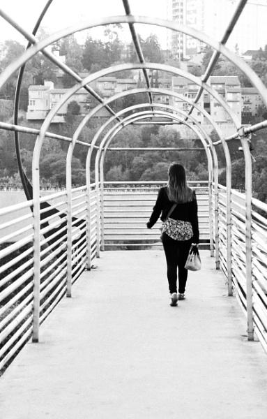 The Crossing by Merlin_k